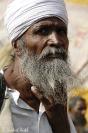 Rajasthan 06