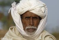 Rajasthan 12